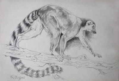 Mauritius Original Artwork