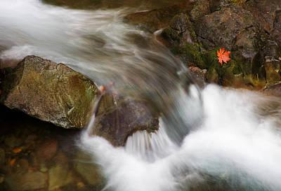 Autumn Landscape Photographs Original Artwork