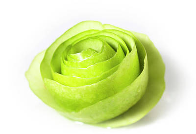 Designs Similar to Granny Smith Apple Rose