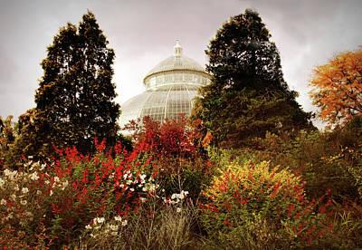 Designs Similar to Autumn Cupola by Jessica Jenney