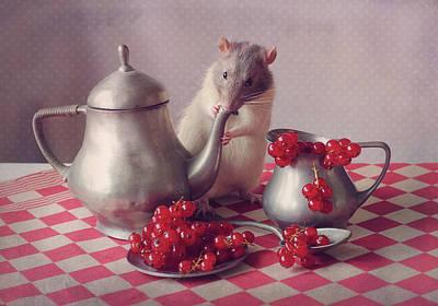 Rodent Art Prints