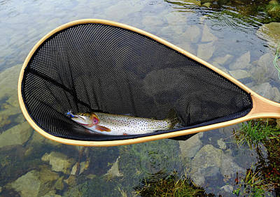 Designs Similar to Trout In Net At Alpine Lake