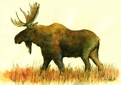 Moose Watercolor Paintings