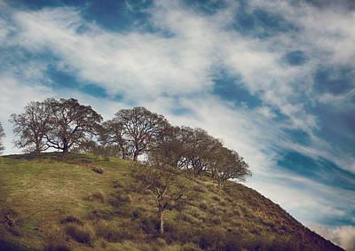 Mountaintop. Trees Prints