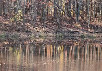 Designs Similar to November Reflections