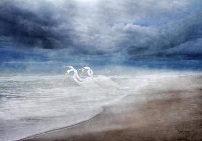 Designs Similar to Paradise Dreamland