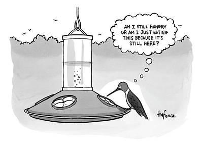 Bird Feeder Drawings