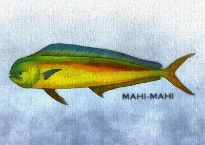 Hawaiian Fish Mixed Media Prints