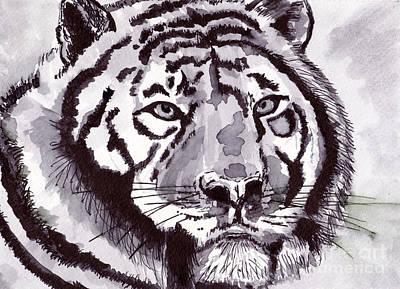 Designs Similar to Tiger by Michael Rados