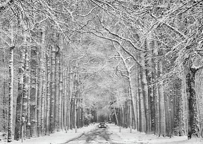 Designs Similar to Winter Mood by Saskia Dingemans