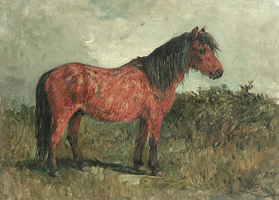 Designs Similar to A Shetland Pony by John Emms