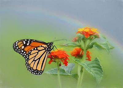 Butterfly Digital Art Original Artwork