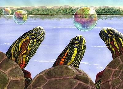 Painted Turtle Art
