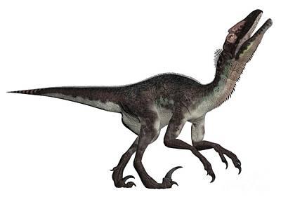 Designs Similar to Utahraptor 1