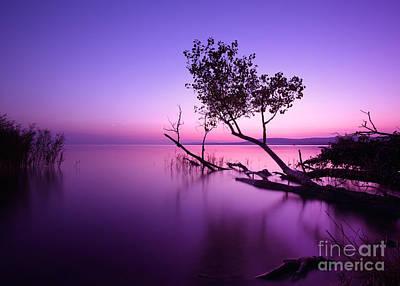 Designs Similar to Sunset Lake. This Photo Make In