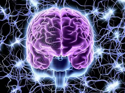 Designs Similar to Brain And Nerve Cells