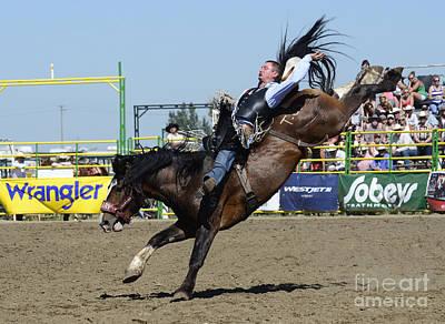 Designs Similar to Rodeo Bareback Riding