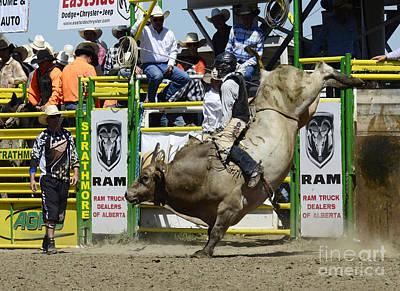 Designs Similar to Rodeo Bull Riding Star