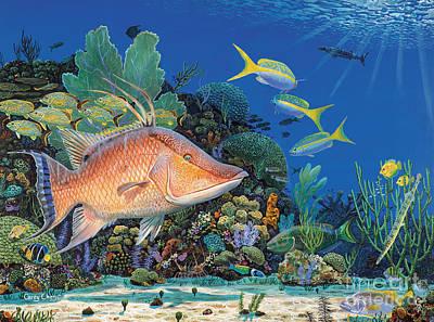 Parrotfish Paintings Original Artwork