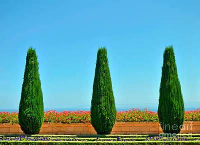 Cypress Gardens Photographs