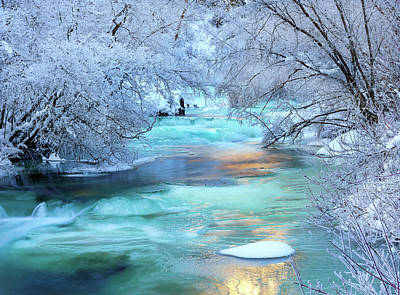 Designs Similar to Winter Brilliance And Beauty
