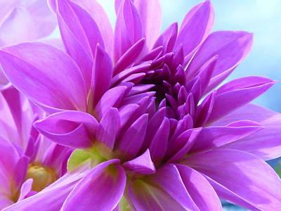 Dreamy Flower Prints