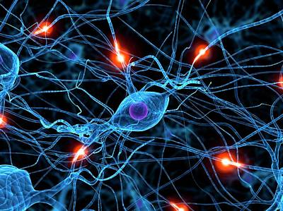 Designs Similar to Nerve Cell Network