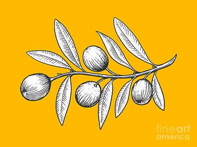 Olive Branch Digital Art