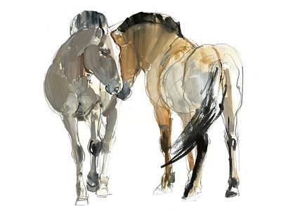 Equine Photographs