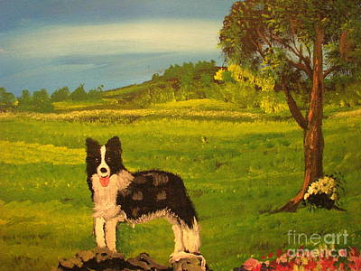 Boder Collie Paintings