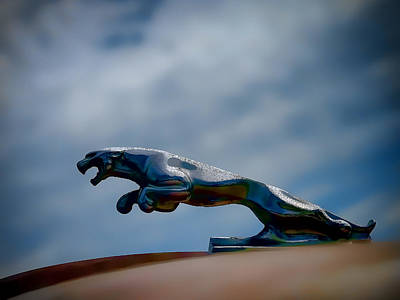 Vintage Hood Ornament Art