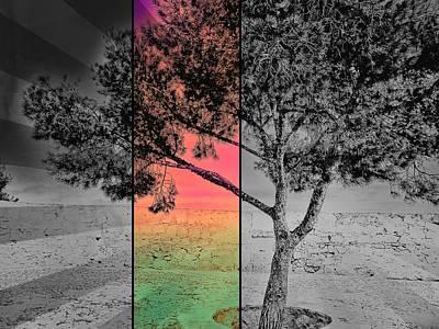 Colors Of Nature Digital Art