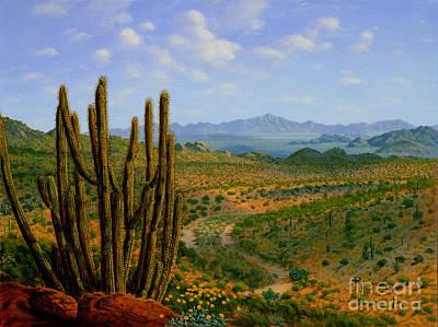 Mark Junge: Cactus Art