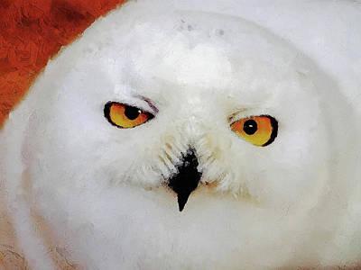 Designs Similar to Baby Owl by Jacky Gerritsen