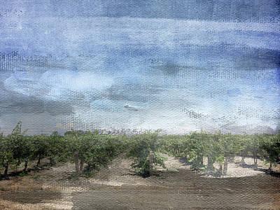 Grape Vine Mixed Media Prints