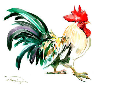Rooster Drawings Prints
