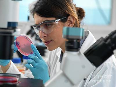Designs Similar to Microbiology Research 15