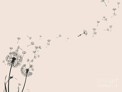 Seed Head Art Prints