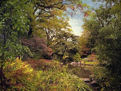 Designs Similar to Rock Garden Pond