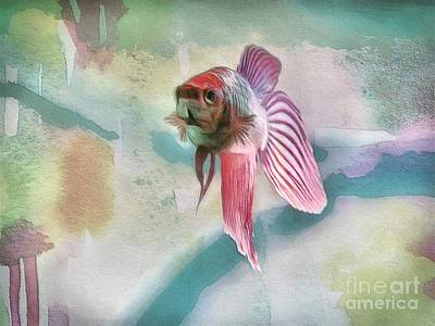 Designs Similar to Rosie The Fish by Diana Rajala