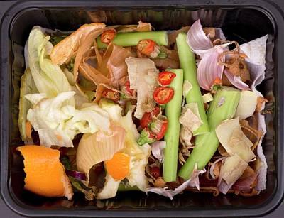 Composting Art