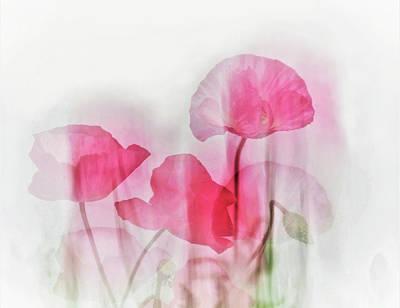 Designs Similar to Flowers by Cindy Liu