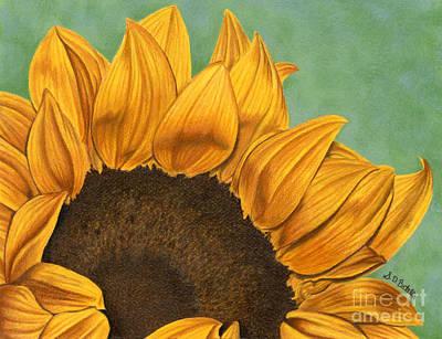 Sunflower Garden Drawings Prints