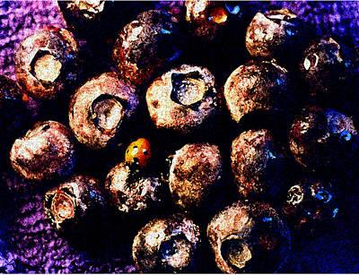 Blueberry Digital Art Original Artwork