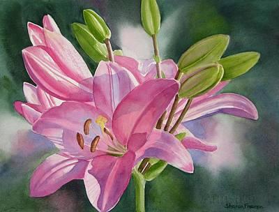 Asiatic Lily Prints