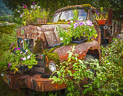 Rusted Cars Photographs Original Artwork
