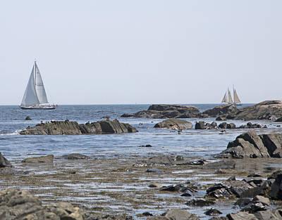 Designs Similar to Sailing by Betsy Knapp