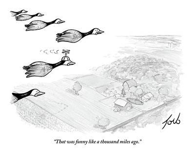 Goose Drawings