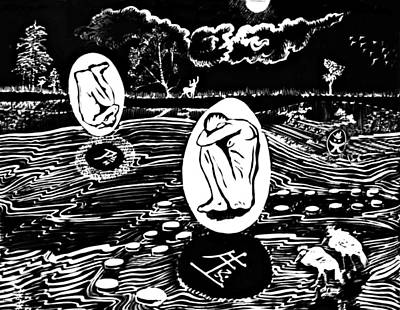 Kiwi Drawings Prints