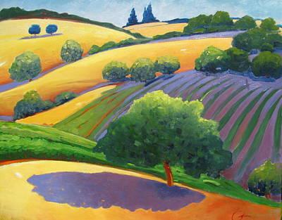 Rolling Hills Vinyards Paintings
